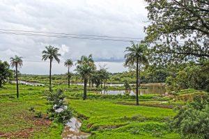 Lastminute-Urlaub Gambia